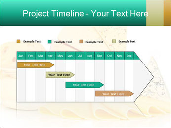 0000078996 PowerPoint Template - Slide 25