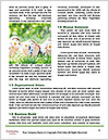 0000079007 Word Template - Page 4