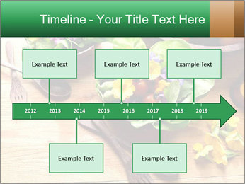 0000079008 PowerPoint Template - Slide 28