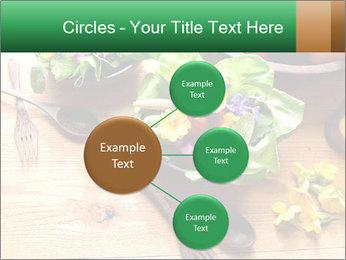 0000079008 PowerPoint Template - Slide 79