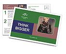 0000079009 Postcard Templates