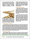 0000079014 Word Templates - Page 4