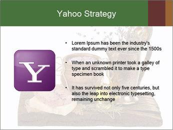 0000079017 PowerPoint Templates - Slide 11