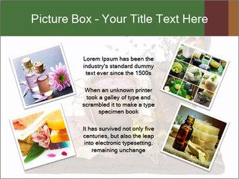 0000079017 PowerPoint Templates - Slide 24