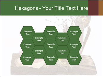 0000079017 PowerPoint Templates - Slide 44