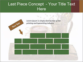0000079017 PowerPoint Templates - Slide 46