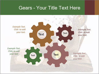 0000079017 PowerPoint Templates - Slide 47
