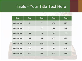 0000079017 PowerPoint Template - Slide 55