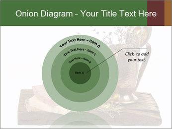 0000079017 PowerPoint Templates - Slide 61