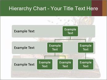 0000079017 PowerPoint Templates - Slide 67