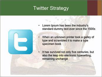 0000079017 PowerPoint Templates - Slide 9