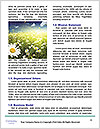 0000079019 Word Templates - Page 4