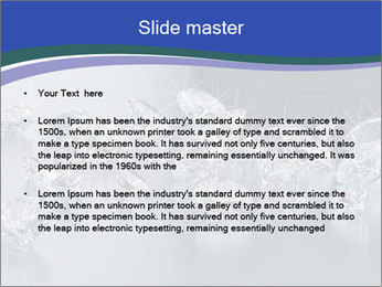 0000079027 PowerPoint Template - Slide 2
