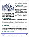 0000079027 Word Template - Page 4