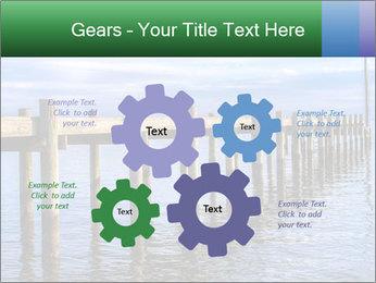 0000079041 PowerPoint Templates - Slide 47
