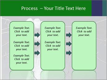 0000079043 PowerPoint Template - Slide 86