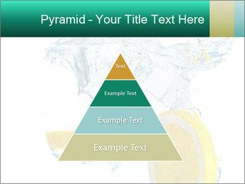 0000079046 PowerPoint Templates - Slide 30