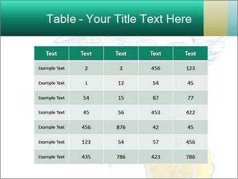 0000079046 PowerPoint Templates - Slide 55