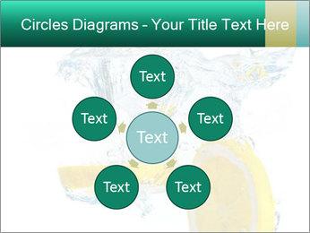 0000079046 PowerPoint Templates - Slide 78