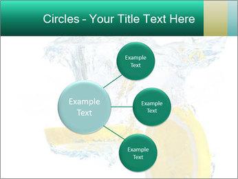 0000079046 PowerPoint Templates - Slide 79