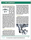 0000079046 Word Template - Page 3