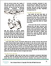0000079046 Word Template - Page 4