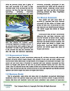 0000079049 Word Template - Page 4