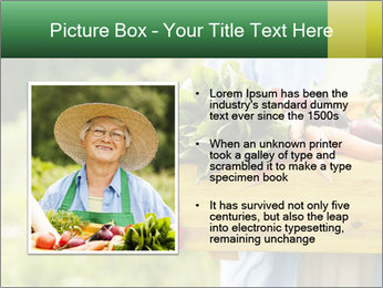 0000079054 PowerPoint Template - Slide 13