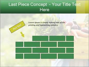 0000079054 PowerPoint Template - Slide 46