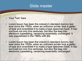 0000079055 PowerPoint Template - Slide 2