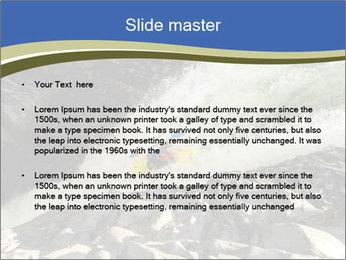 0000079057 PowerPoint Template - Slide 2