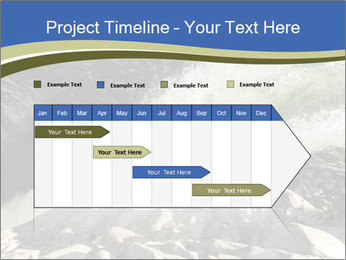 0000079057 PowerPoint Template - Slide 25