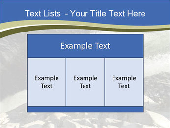 0000079057 PowerPoint Template - Slide 59