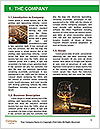 0000079059 Word Template - Page 3