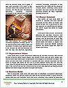 0000079059 Word Template - Page 4