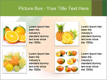 0000079062 PowerPoint Template - Slide 14