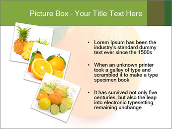 0000079062 PowerPoint Template - Slide 17