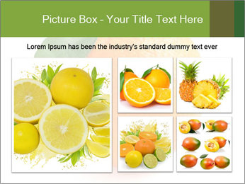 0000079062 PowerPoint Template - Slide 19