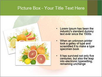 0000079062 PowerPoint Template - Slide 20