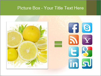 0000079062 PowerPoint Template - Slide 21