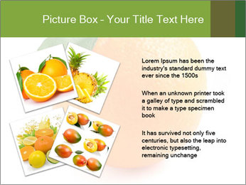 0000079062 PowerPoint Template - Slide 23