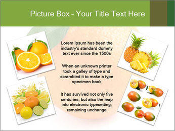 0000079062 PowerPoint Template - Slide 24