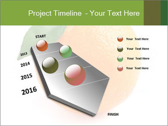 0000079062 PowerPoint Template - Slide 26