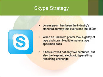 0000079062 PowerPoint Template - Slide 8