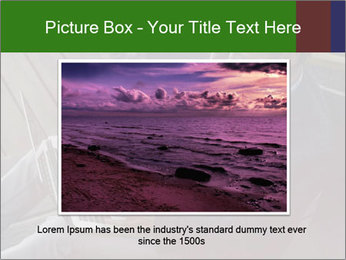 0000079075 PowerPoint Templates - Slide 16