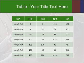0000079075 PowerPoint Templates - Slide 55