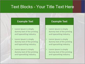 0000079075 PowerPoint Templates - Slide 57