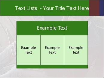 0000079075 PowerPoint Templates - Slide 59