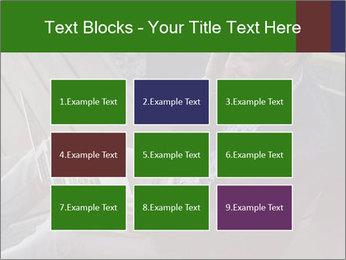 0000079075 PowerPoint Templates - Slide 68