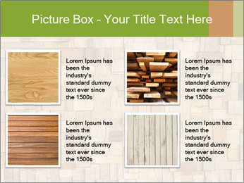 0000079076 PowerPoint Template - Slide 14